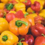 pepper farming business plan in nigeria