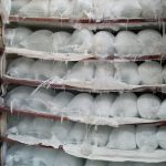 ice block production business plan in nigeria