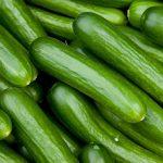 updated cucumber farming business plan in nigeria